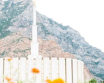 Provo Utah Temple 7