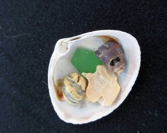 Tiny Treasure Shell with bright green sea glass
