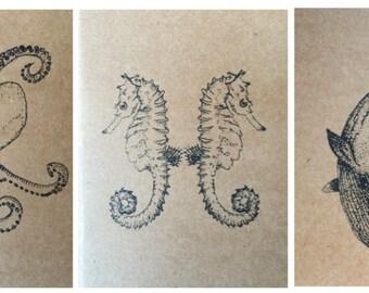 3 Sealife notebooks