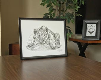 "11x14"" Framed Original Graphite Drawing of Baby Lion Cub"