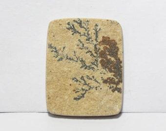 40% off  Psilomelane- Dendritic Limestone cabochon 33X25.5X4.5 mm Size, Cushion Shape Gemstone Cabochon, +++ AAA Quality Gemstone Pdf#1808