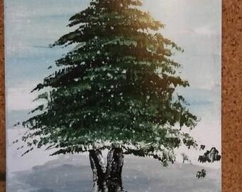 Evergreen Tree 4 (print)