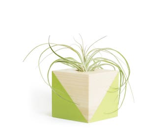 Pastel Green Air Planter, FREE SHIPPING, Shelf Decor, Home Decor, Office Gift, Cute Girlfriend Gift, Gifts for Mom, Plant Gift, Small Pot