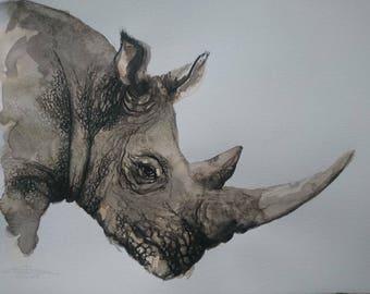Rhinoceros watercolor