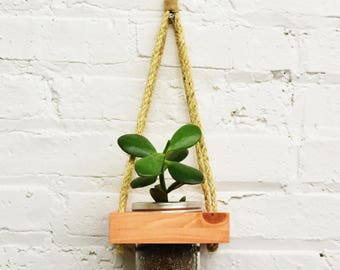 Hanging Planter, Live Succulents, Wall Planter, Live Plants, Indoor Planter, Succulent Planter, Live Planter, Wooden Planter