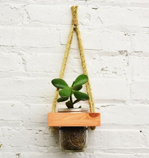 hanging planter live succulents wall planter live plants. Black Bedroom Furniture Sets. Home Design Ideas