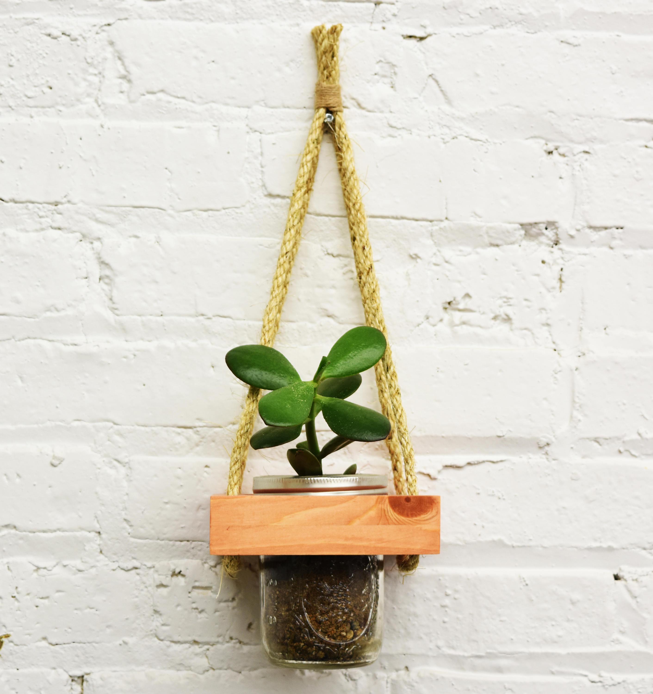 Hanging Planter Live Succulents Wall Planter Live Plants