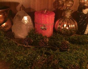 Leo Zodiac astrology occult dandelion Pagan Dragon witch Altar alchemy