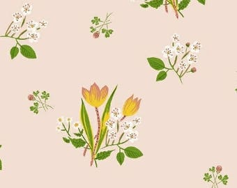 PREORDER - Heather Ross - Spring Blooms in Pink - Kinder - (43482-1) - 1/2 Yard++