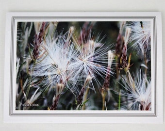 Photo greeting card - Nature card - Any occasion card