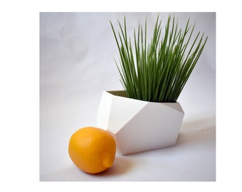 3D Printed Planter for indoor