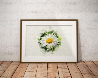 """Daisy Watercolor Poster // Flower Art // Floral Wall Art // Flower Wall Decor // Gifts For Her // 13""""x19"""""""