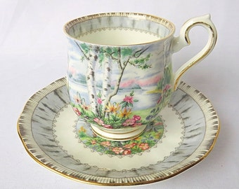 Vintage Royal Albert, Bone China England, ''Silver Birch'' Porcelain Lady Cup and Saucer