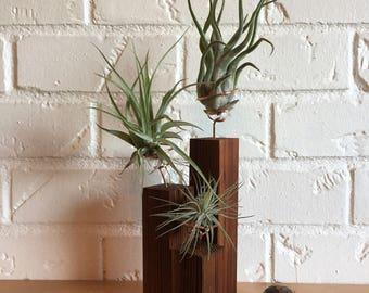 Handmade Wooden Air Plant Holder, 3 plant cedar stand