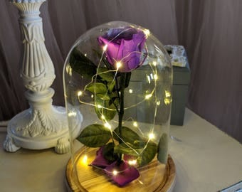 Enchanted Rose, Beauty and The Beast Rose, Preserved Flowers, Long Stem Roses, Purple Forever Rose, Bella Rose, Gift For Her, Eternity Rose