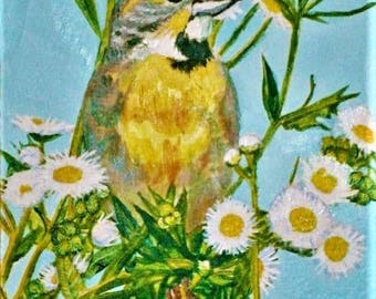 Goldfinch on camomile