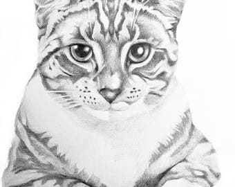 A4 Pet Portrait - Custom Pet portrait - Cat Portrait - Dog Portrait - Pet Portrait - Cat Portraits - Dog Portraits - Pencil Pet portrait