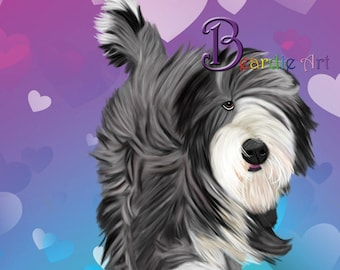 Hand-drawn Bearded Collie greeting card, hair flowing in the wind, on a pink/blue/aqua/purple heart background
