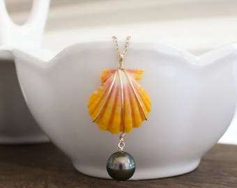 Hawaiian Sunrise Shell with Tahitian Pearl Necklace, Handmade, Layering, 14k Gold Filled, Simply Me Jewelry Sunnie Pearl Necklace, SMJNK428