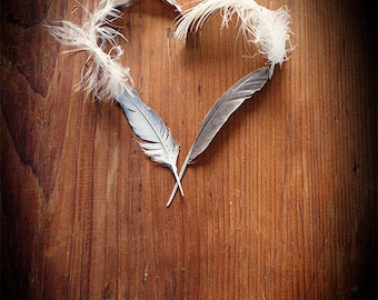 Still Life Photograph, Rustic Photography, Farmhouse Wall Decor, Photo of Feathers, Heart Picture, Love, Valentine, Brown, Grey, White