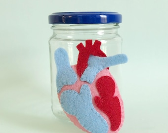Heart Specimen Jar Anatomical Specimen Anatomy Medical Decor