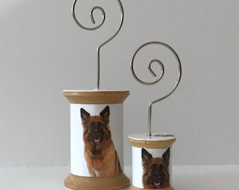 German Shepherd - Cool Spools