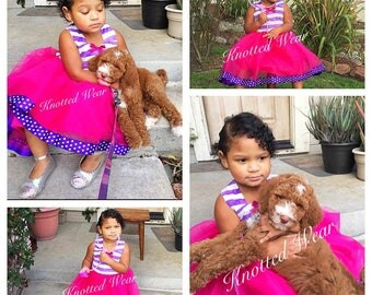 Doc McStuffins Dress: pink and purple tutu dress, Birthday Party, stripes and polka dots, meet and greet, halloween costume