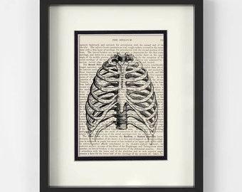 Radiologist, Xray - Thorax, Chest, Ribs, over Vintage Medical Book Page - Radiology, Xray Tech Gift, Radiology Gifts, Radiology Tech Gift