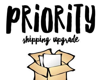 Purchase Upgraded Shipping (US Domestic Only)
