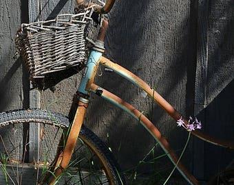 Vintage Bike Photo, Antique Sports photo, Bike at the Farm,  Old blue bike photo, Country Charm Photo, Cottage Chic Photo, Fine Art Photo
