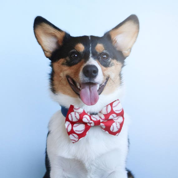 Red Baseball Sport Dog Bow Tie