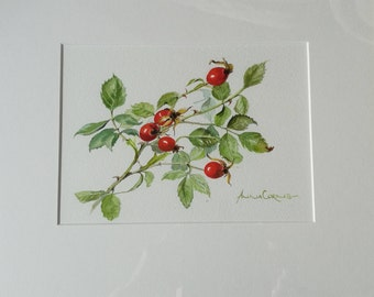 Autumn Watercolour Print - A4 - Rosehips