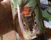 Red Squirrel Water Bottle - Aluminum - 20 Oz