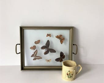 Pressed Butterfly Tray, Vintage Natural Butterflies, Tea for Two Tray, Rectangular Serving Tray, Butterly Specimens Under Glass, Cabin Decor
