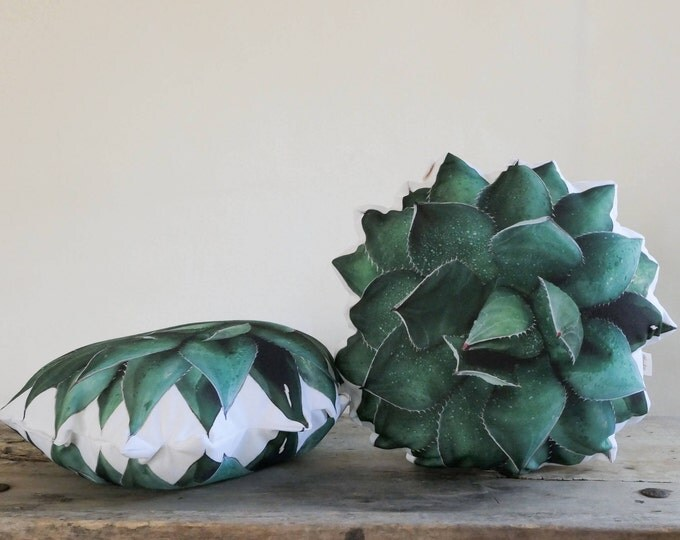2-sided Ruth Agave Succulent pillow (Agave shawii)