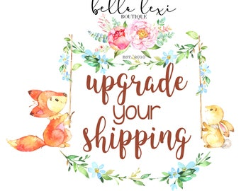 Add On Item to Upgrade Your Shipping Time on an Existing Order