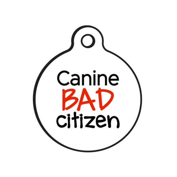 Funny Dog Id Name Tag Canine Bad Citizen Add Your
