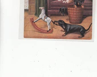 Dachshund Tackel Dog 1913 Postcard, Dog Pulling Tail Of Toy Hobby Horse Two Daschund Pups And Cat Watching