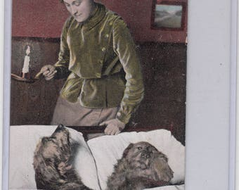 The Good Life-Woman Looks In On Her Two Dogs Sleeping In An Adult Bed Undivided Antique Postcard PM 1907, Good Night