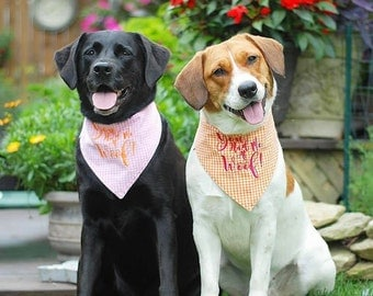 You Had Me At Woof! Pink Gingham Bandana    Reversible Dog Bones Southern Classic Tie Pet Scarf    Puppy Gift by Three Spoiled Dogs