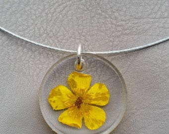Round neck + round pendant in resin and dried Buttercup flower