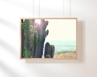 Cactus Wall Art, Cactus Print, Cactus Art, Desert Cactus Photo, Cactus South Western Decor, Cactus Photography, Blue Green Printable Art