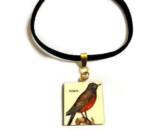 American Robin Choker necklace, Vintage Bird Print, Goth, Romantic, Songbird, Animal & Nature lovers gift, New beginning, Spring celebration