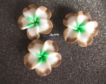 White exotic flower, taupe and green 35 mm-drilled