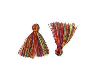 20 mini tassels Rainbow 20mm
