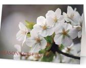 White Flower Seasons Gree...