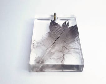Feather Taxidermy Resin Pendant