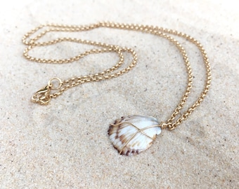 Sea shell necklace, white, sea shell, chain, clasp, necklace, wire , wrapped