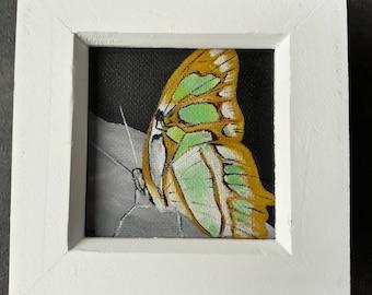 Malachite Siproeta stelenes Butterfly Original Painting - Small 7cm x 7cm