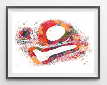 Artery and Vein Cross Section Histology Art Print Circulatory System Watercolor illustration Blood Vessels Anatomy Medical Art Gift